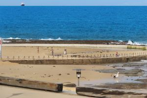 Newcastle Beach is located right on the doorstep of Sandbar Apartment.
